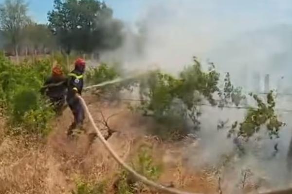 ХРВАТСКА ГОРИ  Огнот се шири и може да зафати куќи