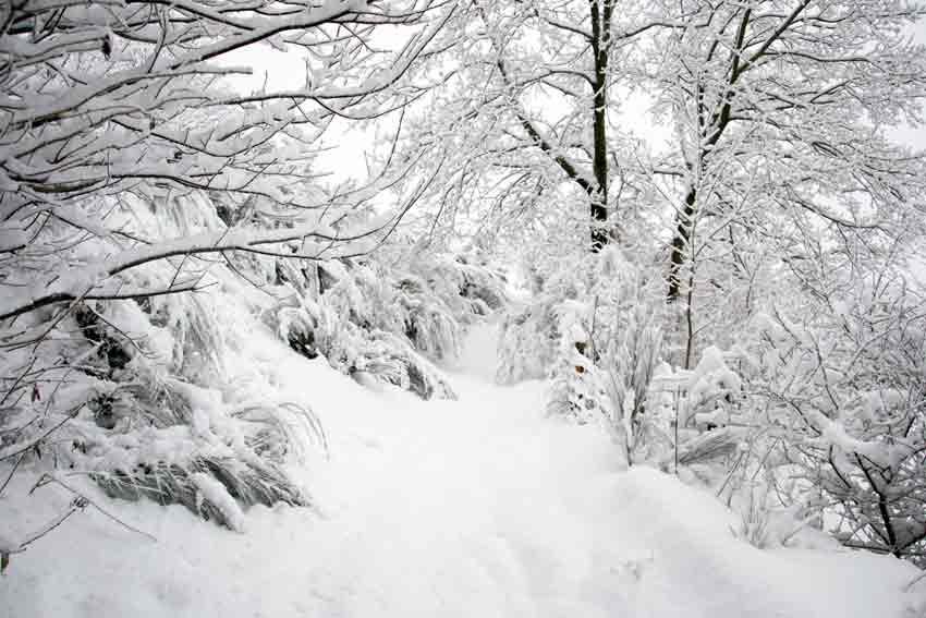 Скопје и Берово најстудени   колку степени под нула се измерени