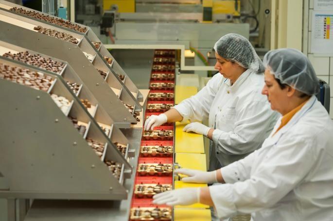 Ако сте невработени  а обожавате чоколади  имате шанса да заработите